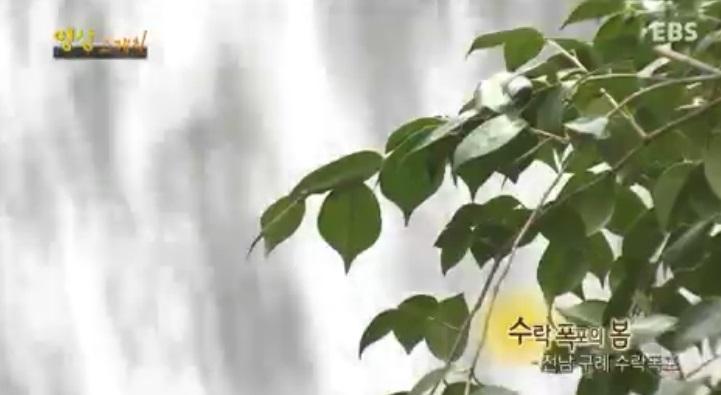 영상 스케치  <수락폭포의 봄>