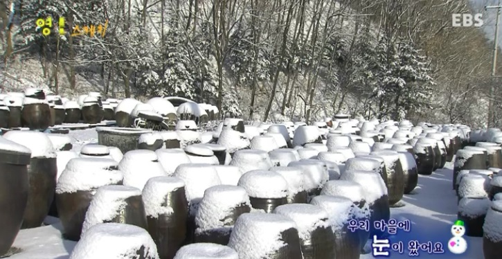 우리 마을에 눈이 왔어요