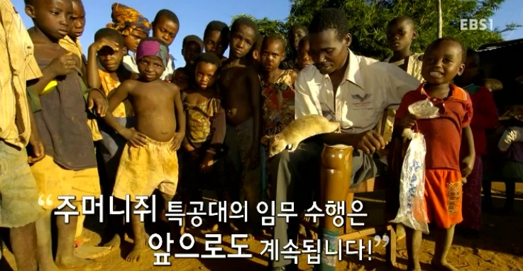 <뉴스G> 주머니쥐 특공대
