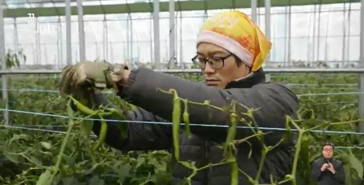 <꿈을 job아라> 미래 유망 산업 '농업', 청년 농부가 뜬다