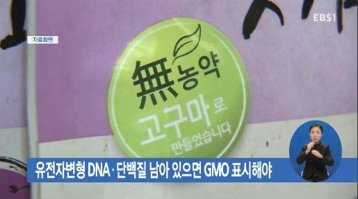 유전자변형 DNA·단백질 남아 있으면 GMO 표시해야