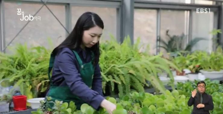 <꿈을 job아라> '반려 식물'과 함께 살아가기
