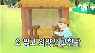 속담이 야호