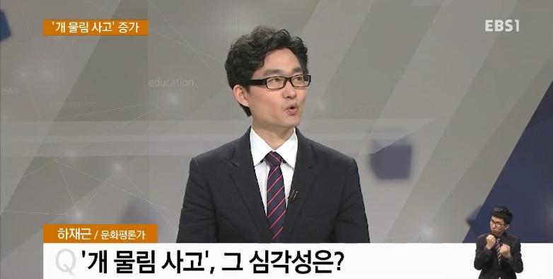 <하재근의 문화읽기> '개 물림 사고' 증가‥심각성은?
