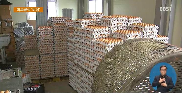 살충제 계란에 학교급식 '비상'‥
