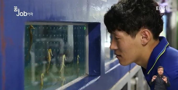 <꿈을 job아라> 물고기 치료사, 수산질병관리사