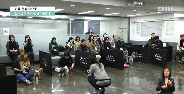 <교육현장 속으로> 반려견과 견주가 함께 배우는 페티켓 '서당개'