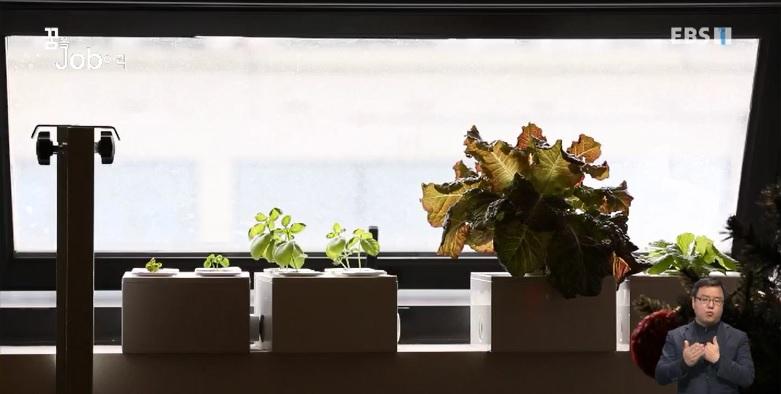 <꿈을 job아라> 농업의 혁신을 꿈꾸다, IoT 농업 스타트업
