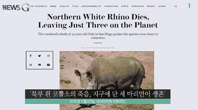 <뉴스G> 코뿔소 '수단'과 나