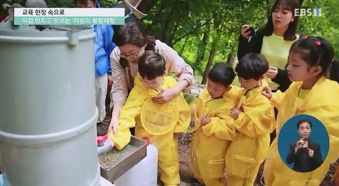 <교육현장 속으로> 직접 만지고 맛보는 '어린이 꿀벌체험'