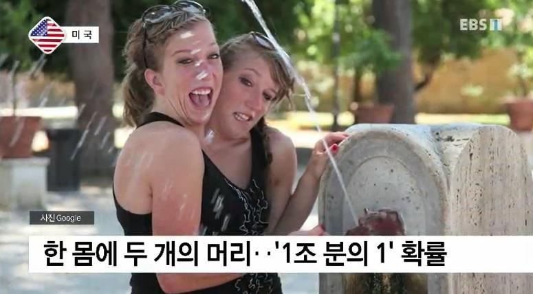 <세계의 교육> 美 미네소타, 샴쌍둥이 선생님 화제