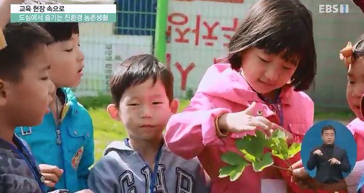 <교육현장 속으로> 도심에서 즐기는 친환경 농촌생활