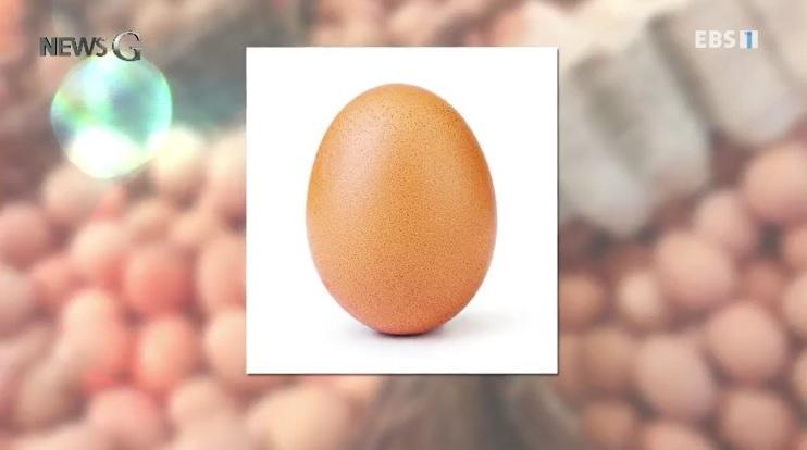 <뉴스G> 세계 기록을 가진 달걀의 정체