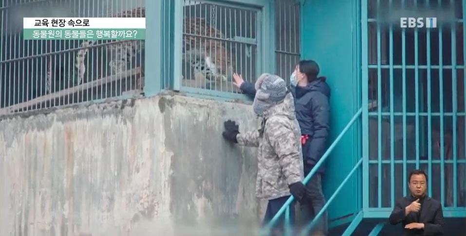<교육현장 속으로> 동물원의 동물들은 행복할까요?