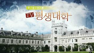 TV 평생대학