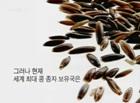 사라진 씨앗