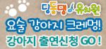 내이름은 크레멍-강아지 출연신청2