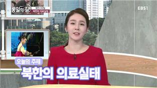 통일의 길, 북한의 의료실태