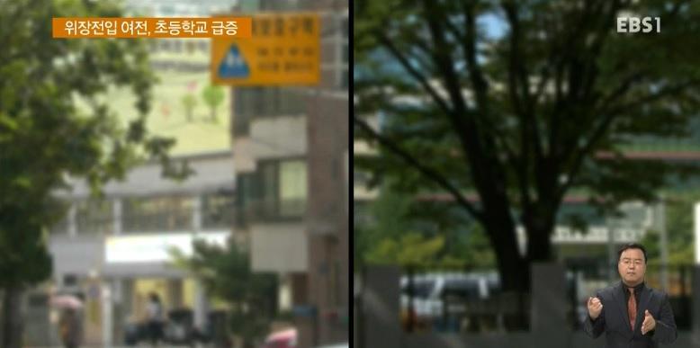 [단독] '수도권 위장전입 심각‥초교 1년새 12배 급증