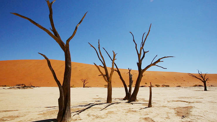 세계테마기행, 붉은 사막의 노래, 나미브