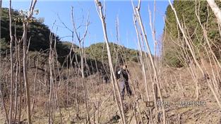 한국기행, 겨울 산중 별난 인생 2부 지리산 그 남자의 천국