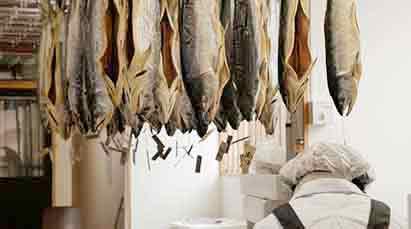 생선의 종말