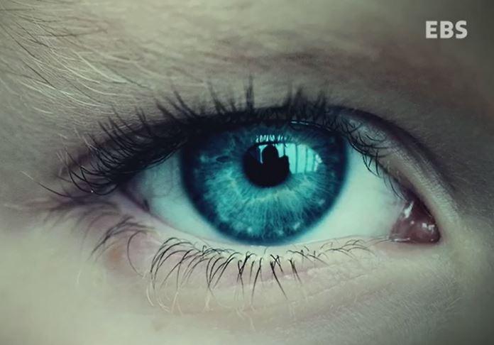 """""""그것 봐, 푸른 눈이라서 그런거야."""", '열등한 푸른 눈'으로 단 하루만에 사실로 받아들인 아이들..차별과 편견은 어떻게 우리는 지배하는가?"""