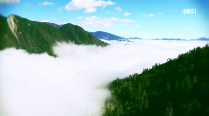 남국의 매력을 품은 섬,타이완