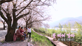 한국기행, 꽃 따러 간다 1부 꽃대궐 가봤니?