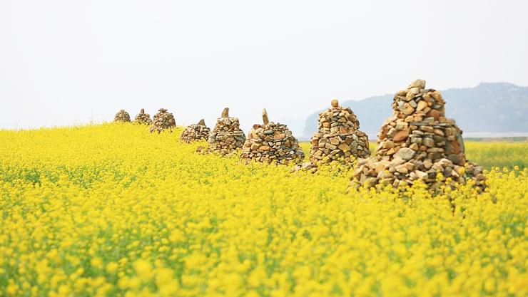 한국기행, 봄은 화기애애(花氣愛愛)