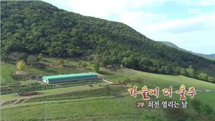 한국기행, 가을에 더 울주 2부 쇠전 열리는 날