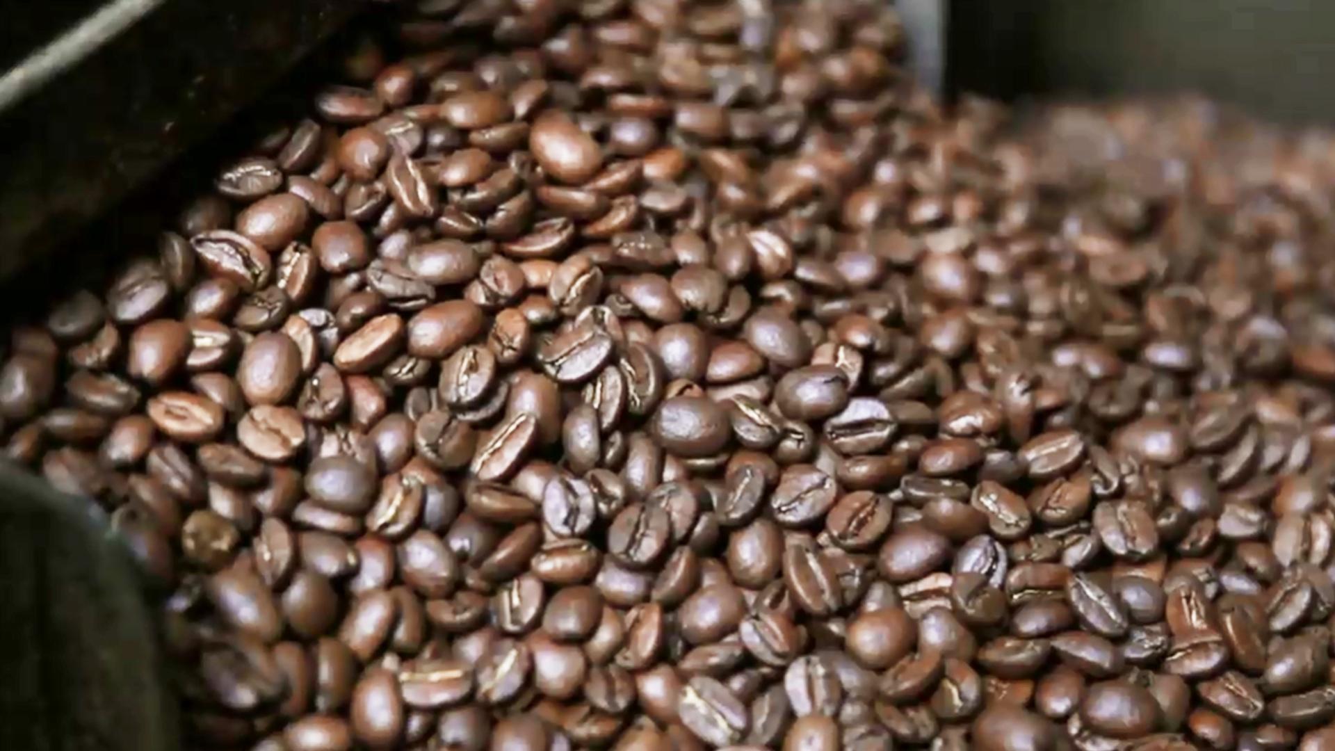 커피 어드벤처