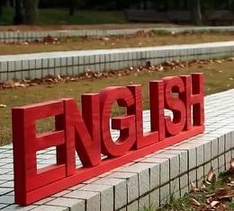 한국인과 영어-욕망의 언어, '내 아이가 뒤처지는 것은 참을 수 없다!' 한국인에게 영어란 무엇인가? 우리 안의 영어에 대한 솔직한 욕망은 과연 무엇인가?