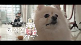 세상에 나쁜 개는 없다 시즌2, 여인천하를 평정한 개 상전 카푸!