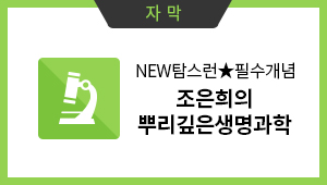 자막:NEW탐스런★필수개념- 조은희의 뿌리 깊은 생명과학I