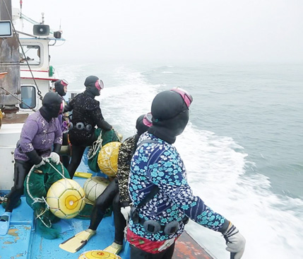 한국기행, 바다에게 전하는 말