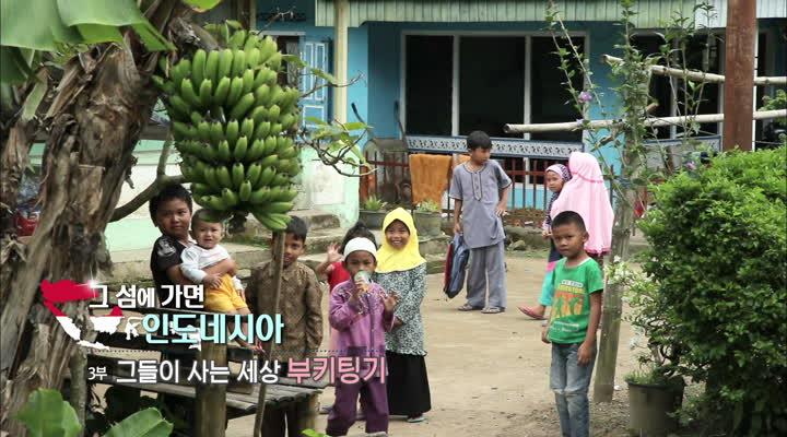 세계테마기행, 그 섬에 가면 인도네시아 3부 그들이 사는 세상, 부키팅키