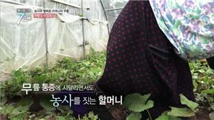 메디컬 다큐-7요일, 농사와 맞바꾼 어머니의 무릎 - 퇴행성 관절염 외