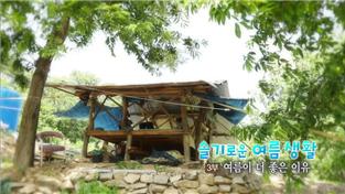 한국기행, 슬기로운 여름생활 3부 여름이 더 좋은 이유