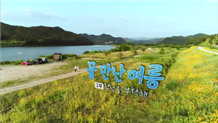 한국기행, 물 만난 여름 3부 닭님을 부탁해