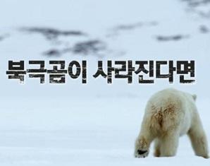 한겨울에 눈 대신 비가 내리면, 어미 곰 '프로스트'와 두 마리 새끼곰..그리고 그들의 발 밑에서 속절없이 녹아내리는 세계에 관한 4년간의 이야기
