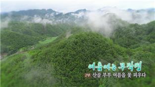 한국기행, 여름에는 무작정 2부 산골 부부, 여름을 꽃 피우다