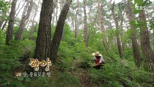 한국기행, 함양 4부 산, 풍요로운 땅