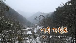 한국기행, 겨울 강원도 3부 눈의 나라는 따뜻했네