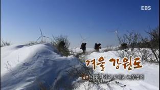 한국기행, 겨울 강원도 4부 대관령에서 보내온 눈꽃 엽서