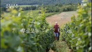 세계 견문록 아틀라스, 프랑스 와인기행 - 1부 부르고뉴