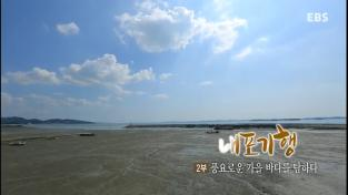 한국기행, 내포기행 2부 풍요로운 가을바다를 탐하다