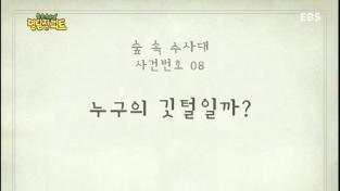 명탐정 피트, 8회 누구의 깃털일까?