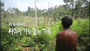 하나뿐인 지구, 인도네시아, 사라져 가는 숲의 기록