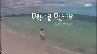세계 견문록 아틀라스, 멕시코 맛기행 - 3부 애니깽의 김치